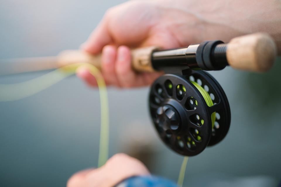 Красноярцы начали получать штрафы за ловлю рыбы на Абаканской протоке